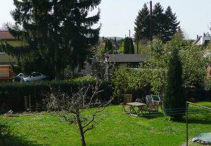 Gartenblick.a76ef047d8d24c03823acdf41c4ee7c8
