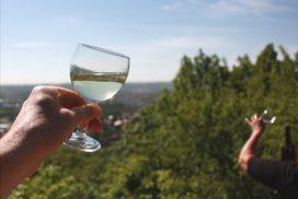 Weinwanderungen